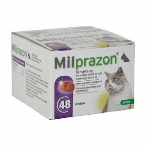 Milprazon large cat
